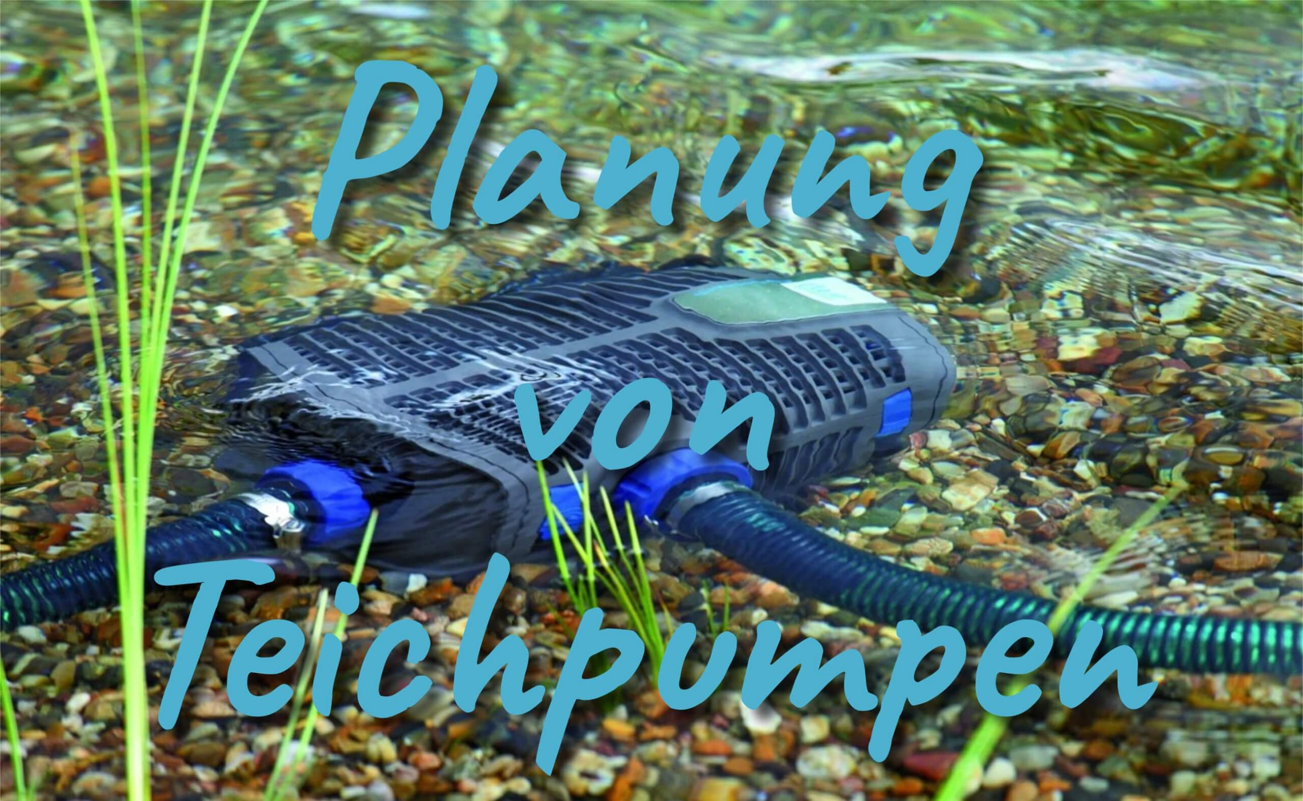 Planung von Teichpumpen